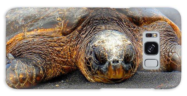 Turtle Rest Stop Galaxy Case