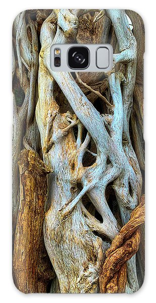 Limb Galaxy Case - Twisted Tree Limbs by Garry Gay