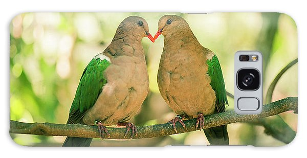 Two Colourful Doves Resting Outside On A Branch. Galaxy Case