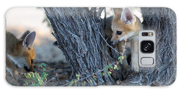 Ecology Galaxy Case - Two Cute Baby Cape Foxes Exploring by Otto Du Plessis