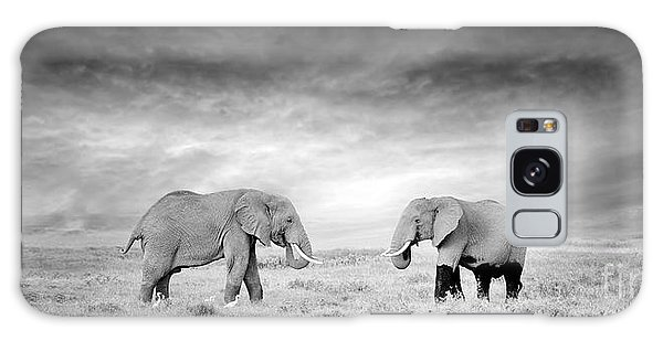 Powerful Galaxy Case - Two Elephant In The Wild - National by Volodymyr Burdiak