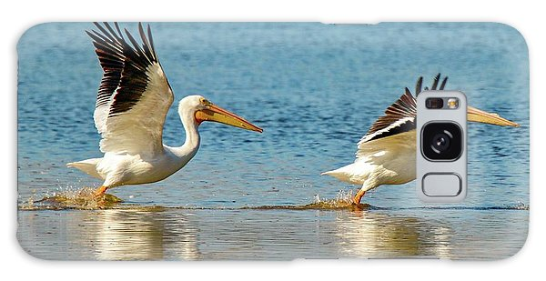 Two Pelicans Taking Off Galaxy Case