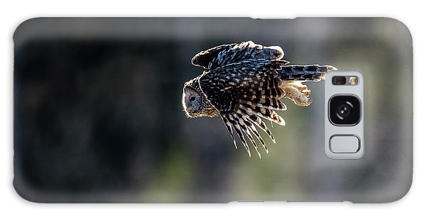 Ural Owl Flying Against The Light To Catch A Prey  Galaxy Case