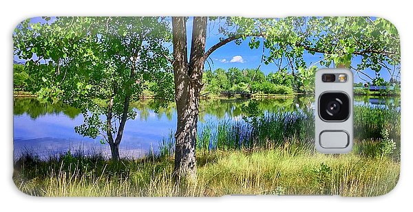 Galaxy Case featuring the photograph Viele Lake 4 by Dan Miller