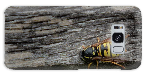 Wasp On Wood Galaxy Case