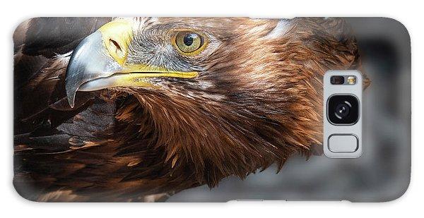 Watching Eagle Galaxy Case