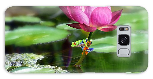 Water Lily And Little Frog Galaxy Case