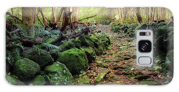 Waterfall Path Galaxy Case