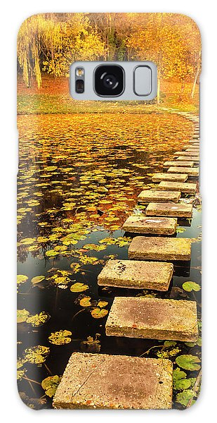 Way In The Lake Galaxy Case