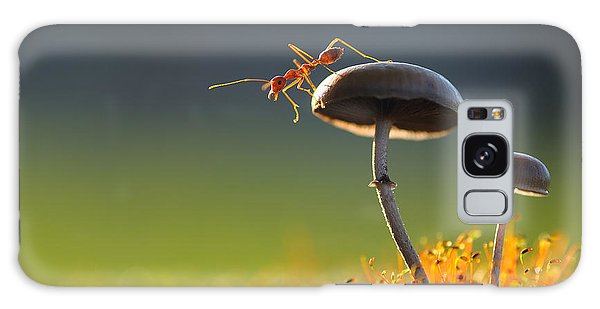 Jump Galaxy Case - Weaver Ant Want To Jump From A Mushroom by Robby Fakhriannur