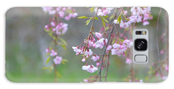 Weeping Cherry Blossoms Galaxy Case