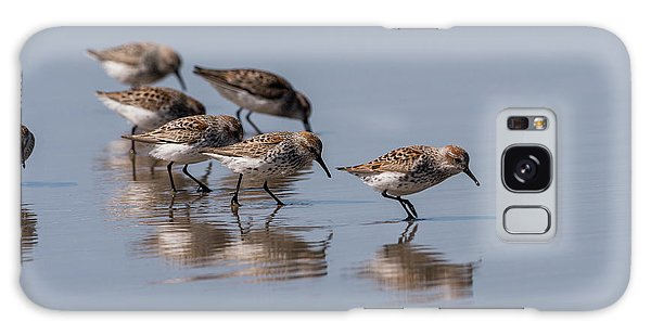Western Sandpipers And Reflection Galaxy Case