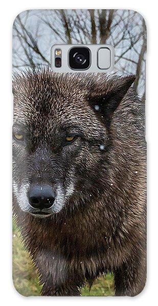 Wet Wolf Galaxy Case