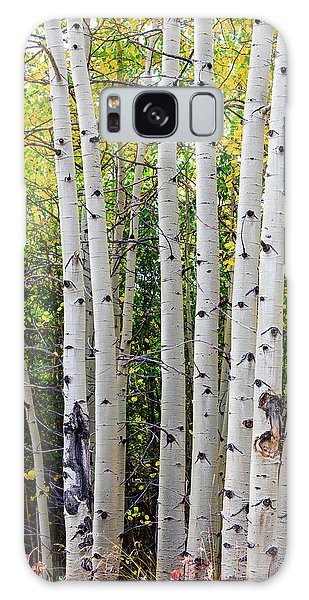 Galaxy Case featuring the photograph White Bark Golden Forest by James BO Insogna