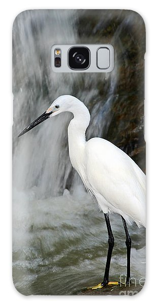 Great Lakes Galaxy Case - White Bird With Waterfall. Heron In The by Ondrej Prosicky