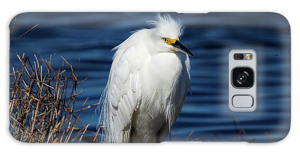 White Egret Galaxy Case