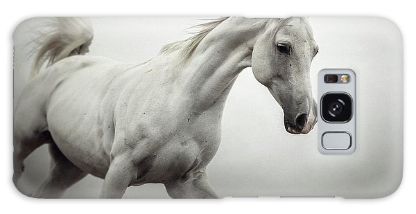 Galaxy Case featuring the photograph White Horse On The White Background Equestrian Beauty by Dimitar Hristov