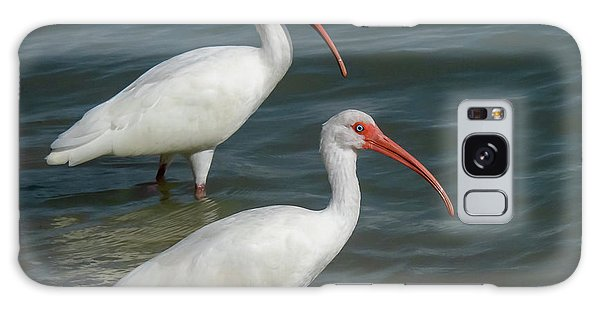 Galaxy Case featuring the photograph White Ibis Pair by Ken Stampfer