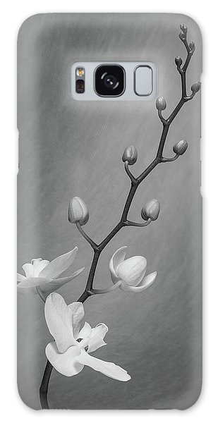 Bud Galaxy Case - White Orchid Buds by Tom Mc Nemar