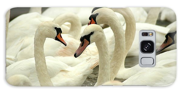 Colours Galaxy Case - White Swans On A Canal In Stratford by Paul Banton