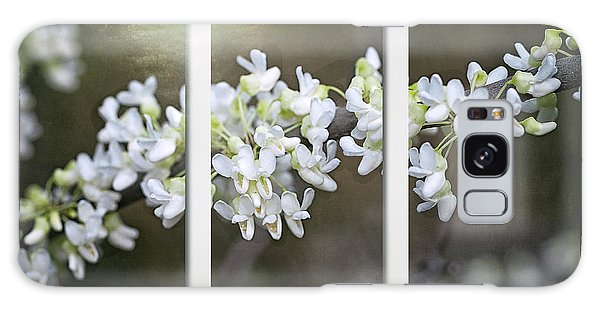 Galaxy Case featuring the photograph Whitebud Triptych by Ann Jacobson