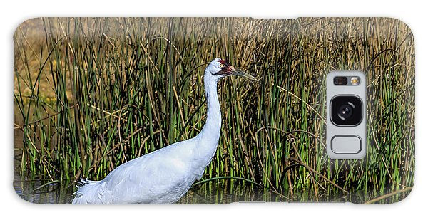 Whooping Crane In Pond Galaxy Case