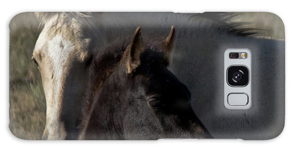 Wild Mustangs Of New Mexico 4 Galaxy Case