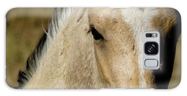 Wild Mustangs Of New Mexico 5 Galaxy Case