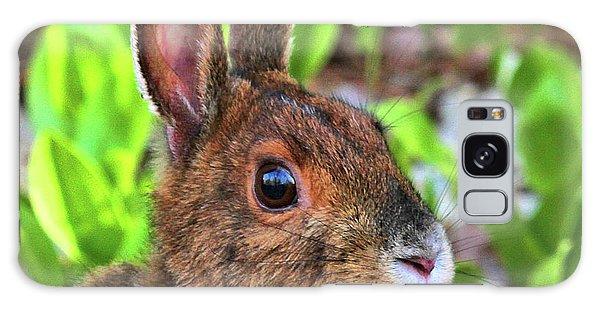 Wild Rabbit Galaxy Case