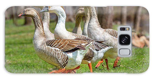 Canada Goose Galaxy Case - Wildlife Waddlers  by Betsy Knapp