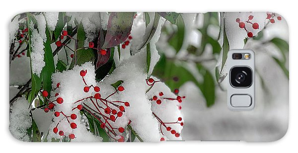 Winter Berries Galaxy Case