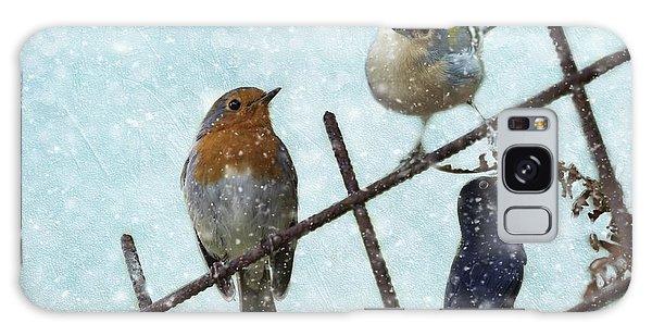 Winter Birds Galaxy Case