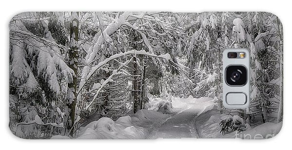 Galaxy Case featuring the photograph Winter In The Forest by Edmund Nagele