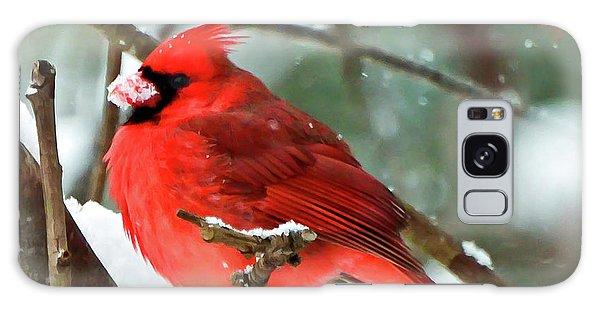 Winter Red Bird - Male Northern Cardinal With A Snow Beak Galaxy Case