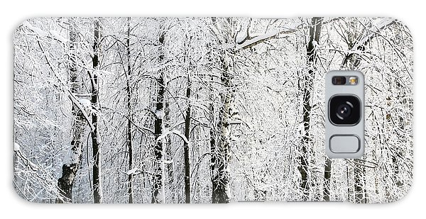 Ecology Galaxy Case - Winter Trees by Lenikovaleva