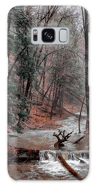 Winter Woods Galaxy Case