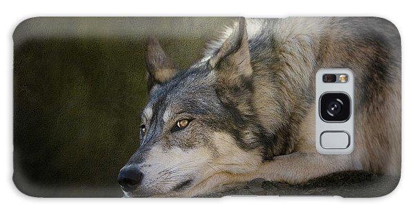 Wolf Watch Galaxy Case