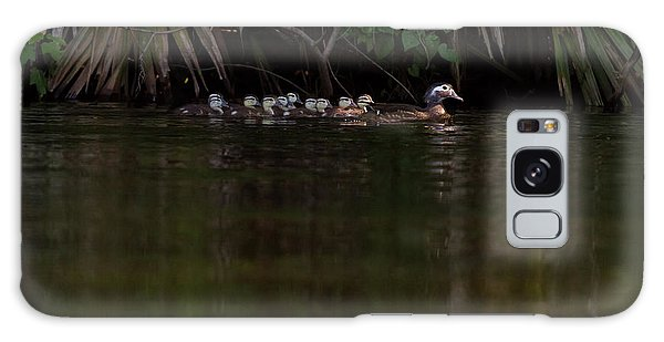 Wood Duck And Ducklings Galaxy Case