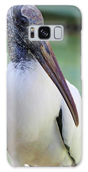 Wood Stork 40312 Galaxy Case