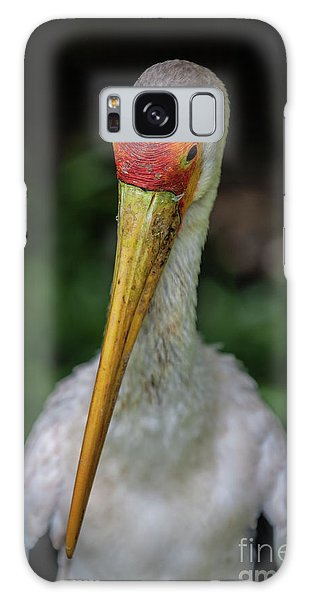 Yellow Billed Storks Galaxy Case