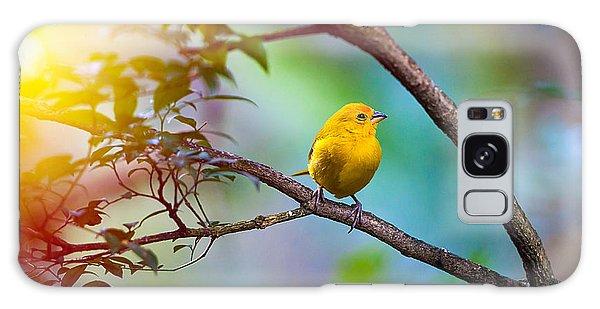 Perches Galaxy Case - Yellow Bird Sitting On A Branch by Seqoya