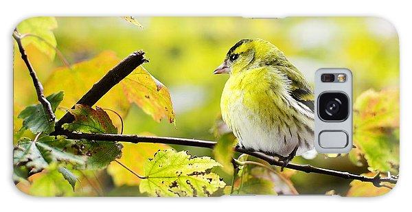 Yellow Bird Galaxy Case