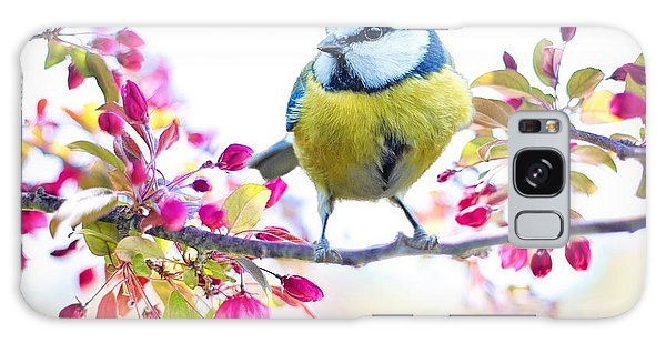 Yellow Blue Bird With Flowers Galaxy Case