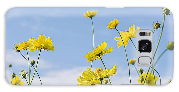 Bright Colors Galaxy Case - Yellow Cosmos Flowers With Light Blue by Thatreec