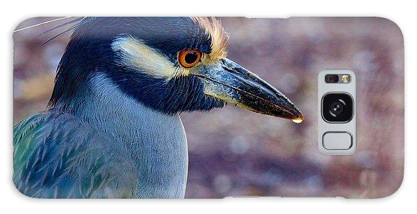 Yellow-crowned Night Heron Galaxy Case