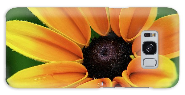 Yellow Flower Black Eyed Susan Galaxy Case