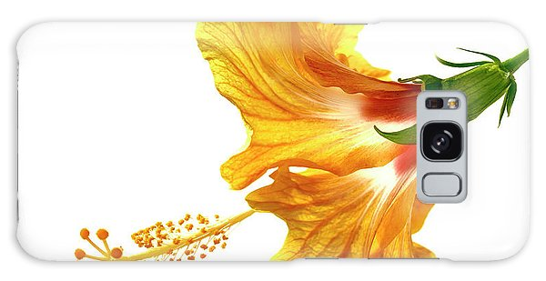 Hibiscus Galaxy Case - Yellow Hibiscus by Christopher Johnson