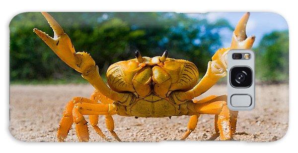 Claws Galaxy Case - Yellow Land Crab. Cuba by Gudkov Andrey