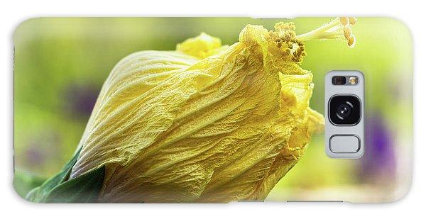Yellow Mature Hibiscus  Galaxy Case