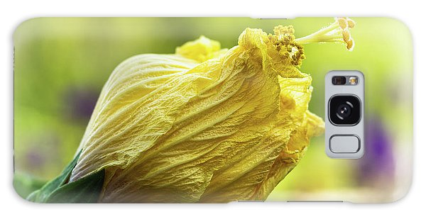 Yellow Mature Hibiscus  Galaxy Case